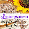 Seedsofchangesunflower.png